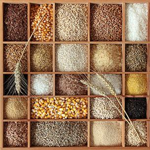 ancient grains image